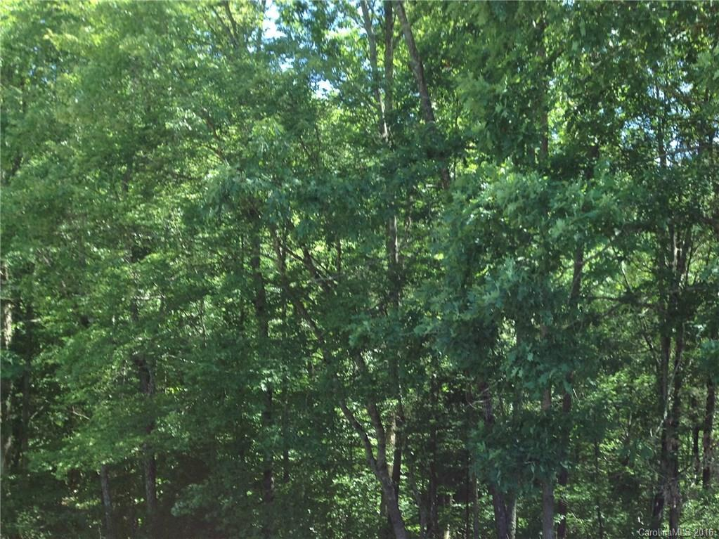 Little River Road, Indian Land, SC 29707, MLS # 3186945