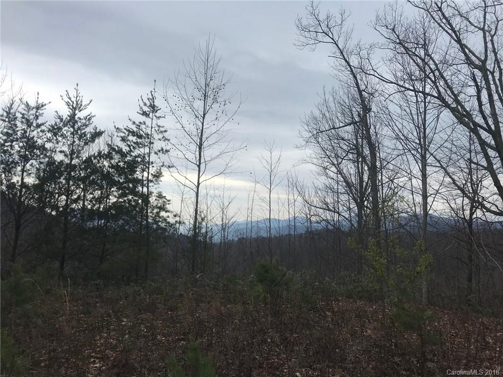 999 Lake George Road Unit 973, Old Fort, NC 28762, MLS # 3330292