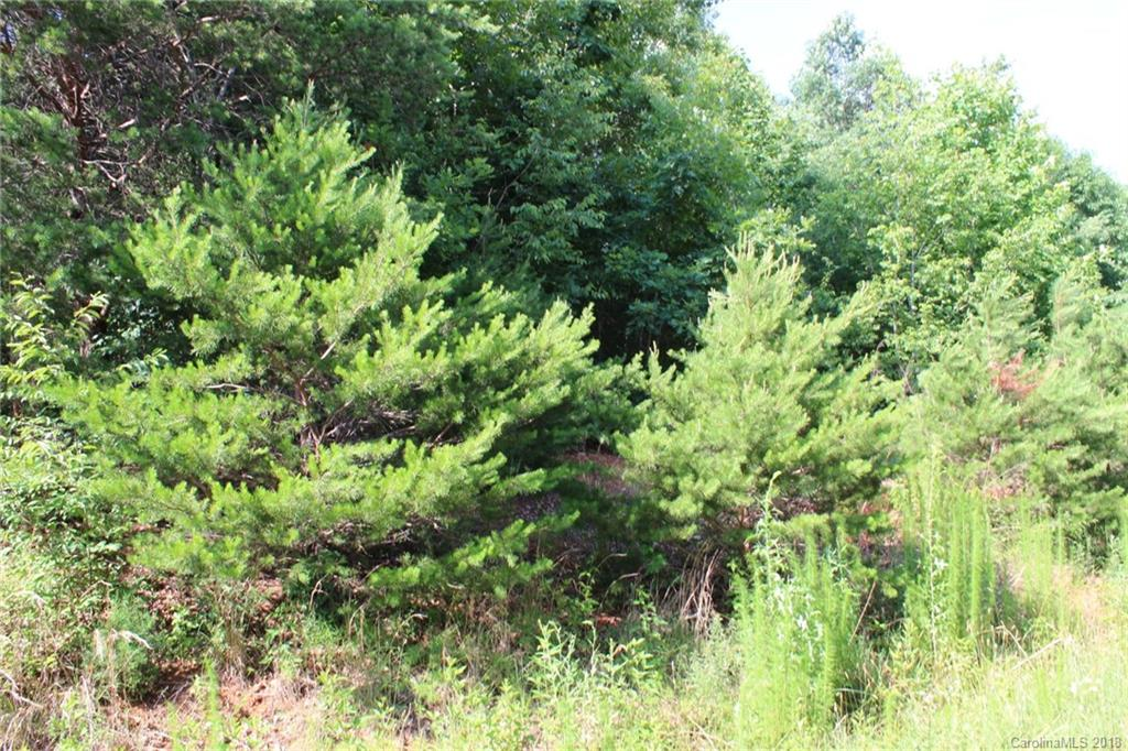 249 Donsdale Drive, Statesville, NC 28625, MLS # 3405148