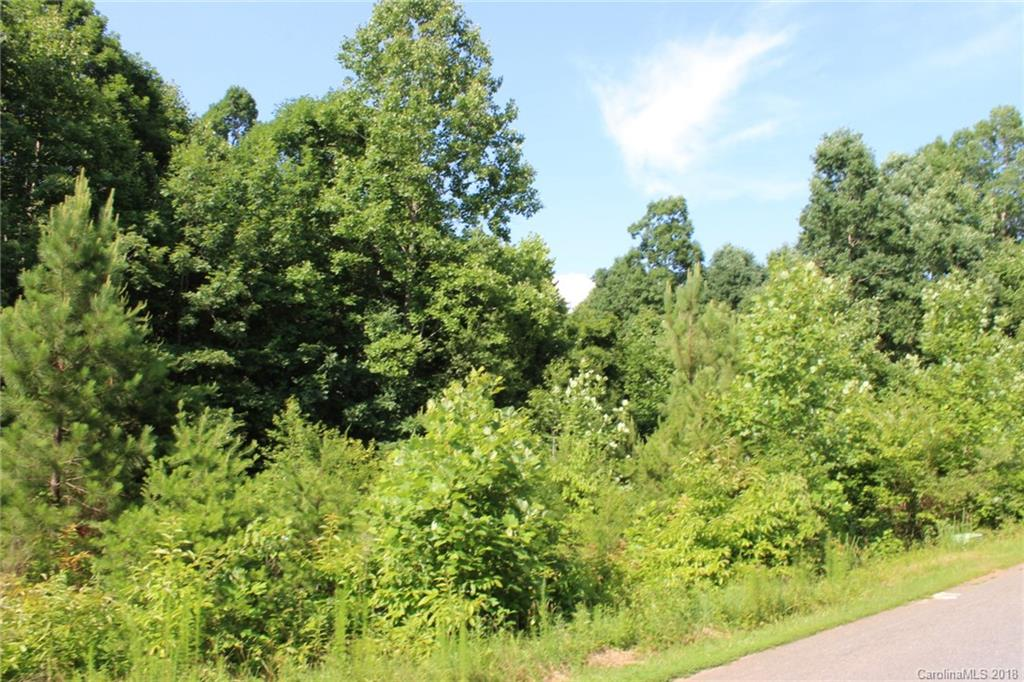 250 Donsdale Drive, Statesville, NC 28625, MLS # 3405157