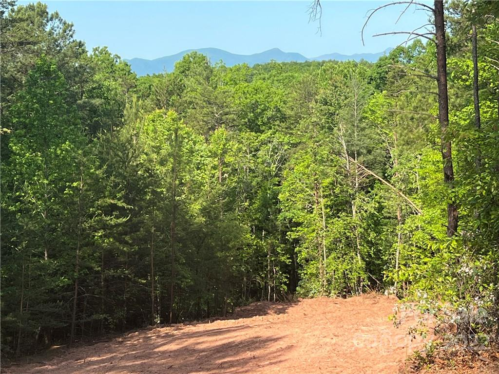 1411 Pisgah Preserve Drive Unit Lot# , Nebo, NC 28761, MLS # 3418189