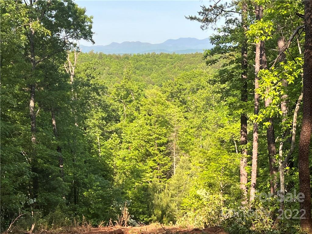 Pisgah Preserve Drive Unit Lot# , Nebo, NC 28761, MLS # 3418240