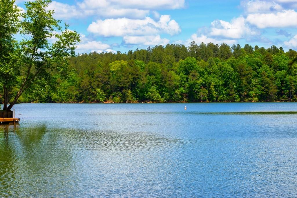 100 Rivercliff Drive Unit 29, Connelly Springs, NC 28612, MLS # 3480124