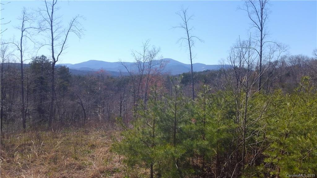 176 Deer Jump Trail Unit 351, Lake Lure, NC 28746, MLS # 3493504