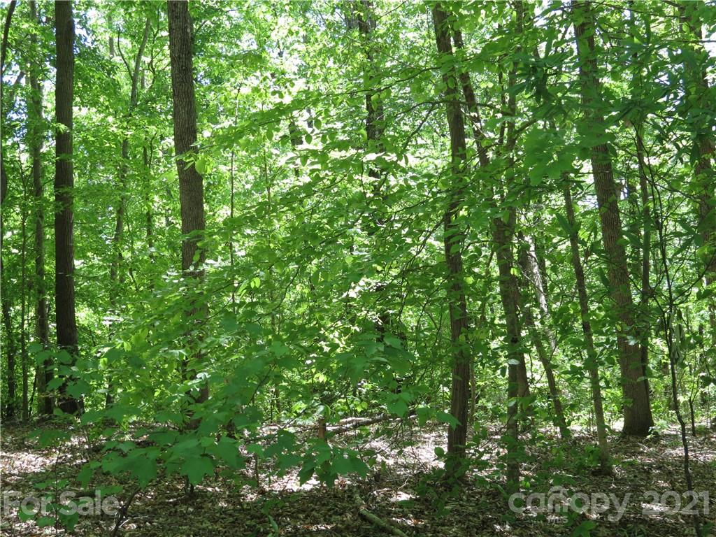 General Griffith Circle Unit 35 & , Rutherfordton, NC 28139, MLS # 3500943