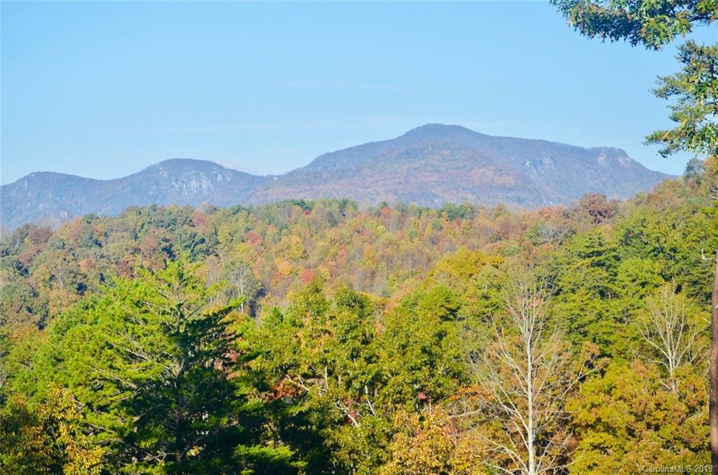 Willow Top Lane Unit Lot 3, Lake Lure, NC 28746, MLS # 3503613