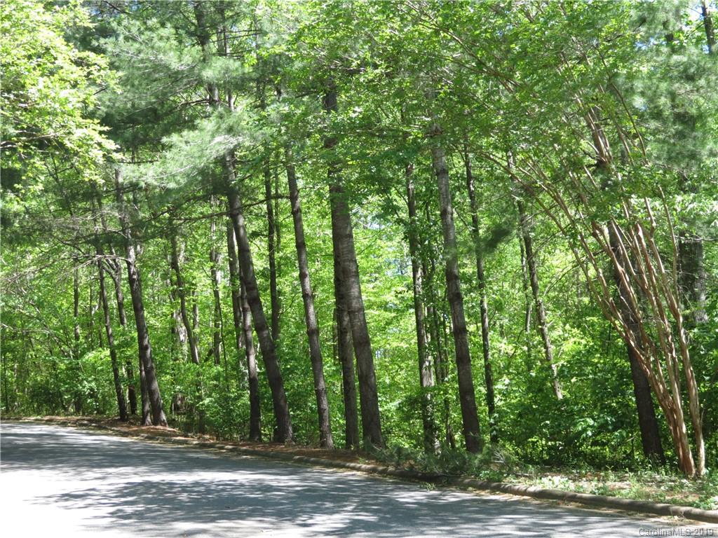 31 General Griffith Circle Unit 31, Rutherfordton, NC 28139, MLS # 3525316