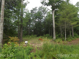 Fox Ridge Trail Unit 6, Marion, NC 28752, MLS # 3530909