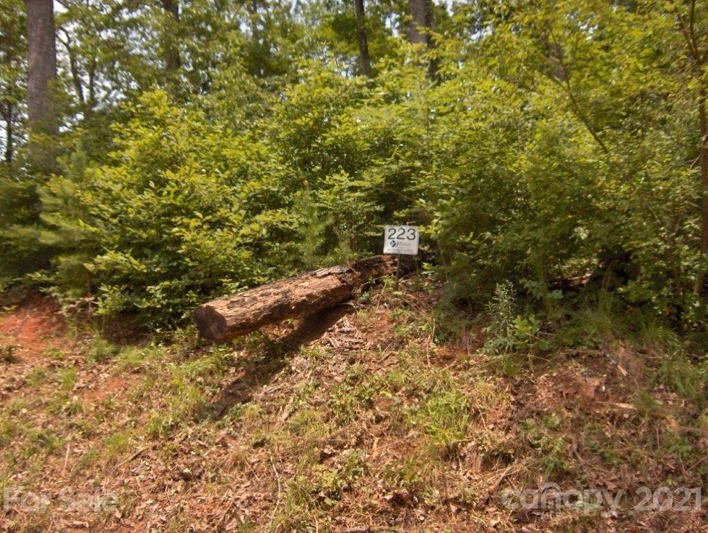 Rock Ledge Drive Unit 223, Lake Lure, NC 28746, MLS # 3531009