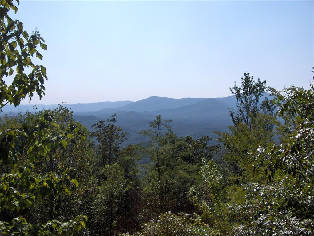 Golden Ridge Drive Unit 134, Lake Lure, NC 28746, MLS # 3552792