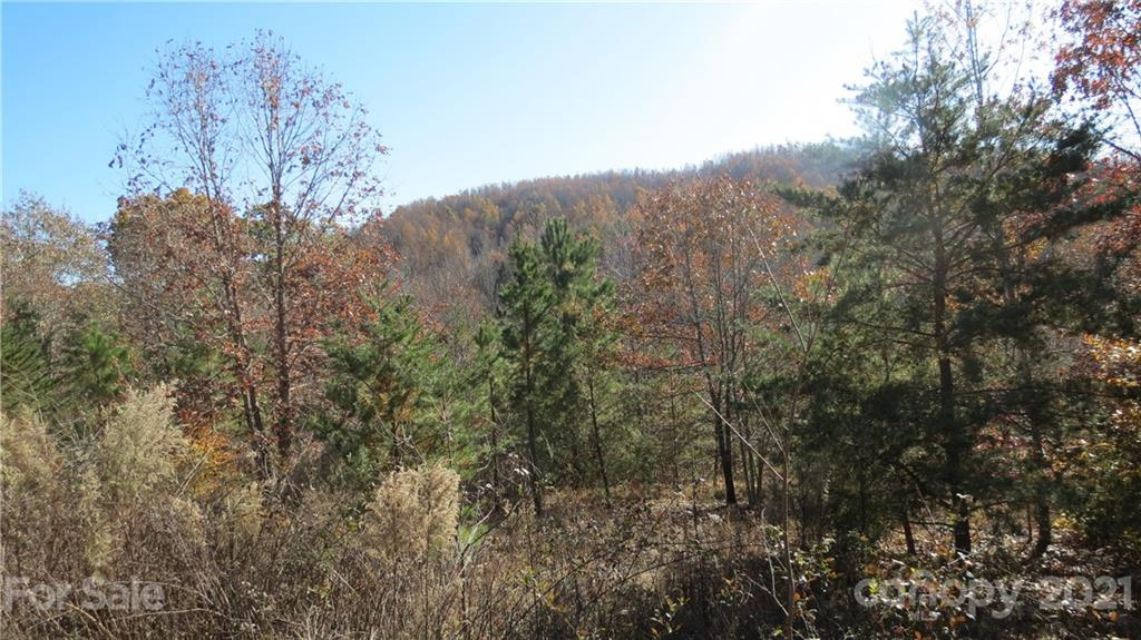 14 Double Eagle Drive, Nebo, NC 28746, MLS # 3569772
