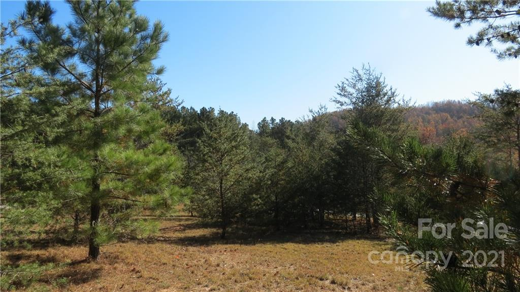 Double Eagle Drive, Nebo, NC 28761, MLS # 3569800