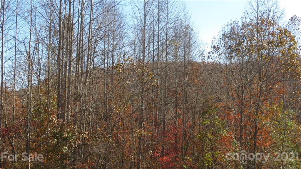 Double Eagle Drive, Nebo, NC 28761, MLS # 3570249