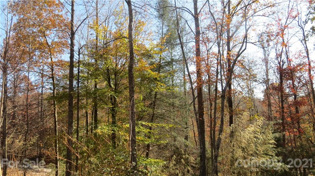 Double Eagle Drive, Nebo, NC 28761, MLS # 3570592