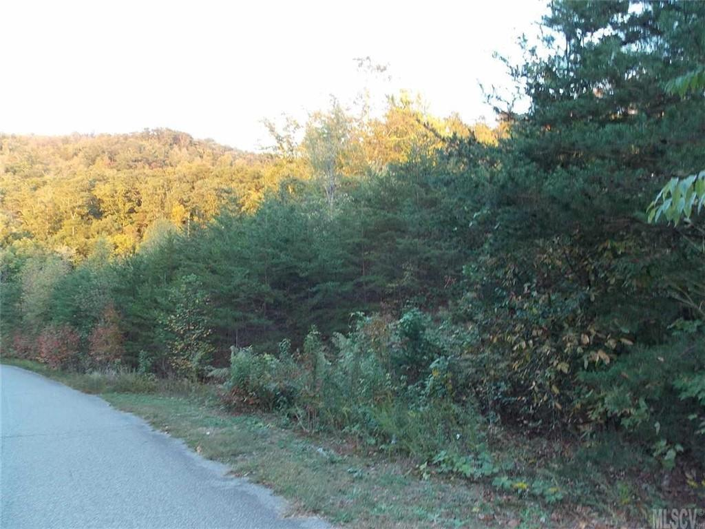 2468 Lick Mountain Drive, Hudson, NC 28638, MLS # 3624458