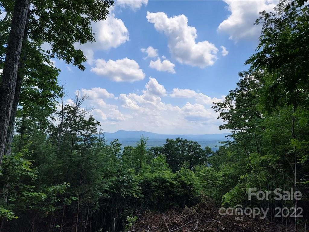 Bills Mountain Trail Unit 129, Lake Lure, NC 28746, MLS # 3655140