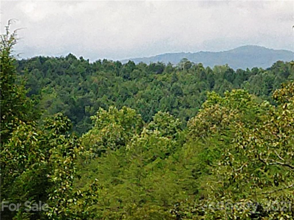 Willow Top Lane, Lake Lure, NC 28746, MLS # 3666009