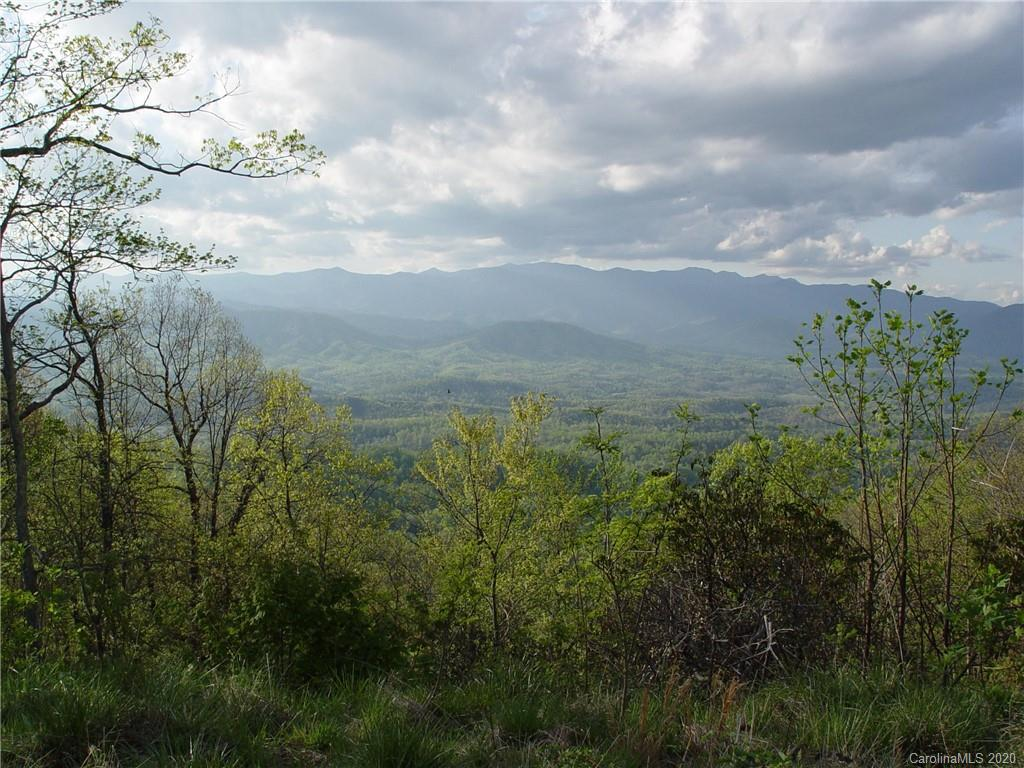829 Table Rock Road Unit 829, Old Fort, NC 28762, MLS # 3667739