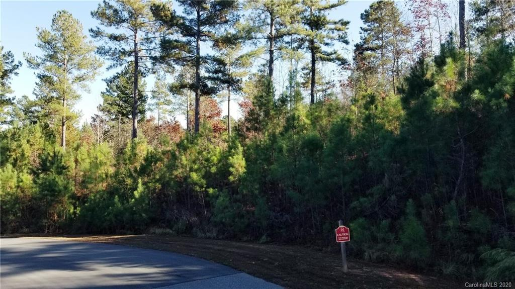 1489 Lake Vista Drive, Connelly Springs, NC 28612, MLS # 3682207