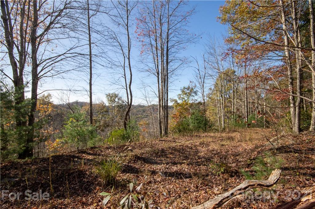 Misty Rock Lane Unit 557, Lenoir, NC 28645, MLS # 3683260