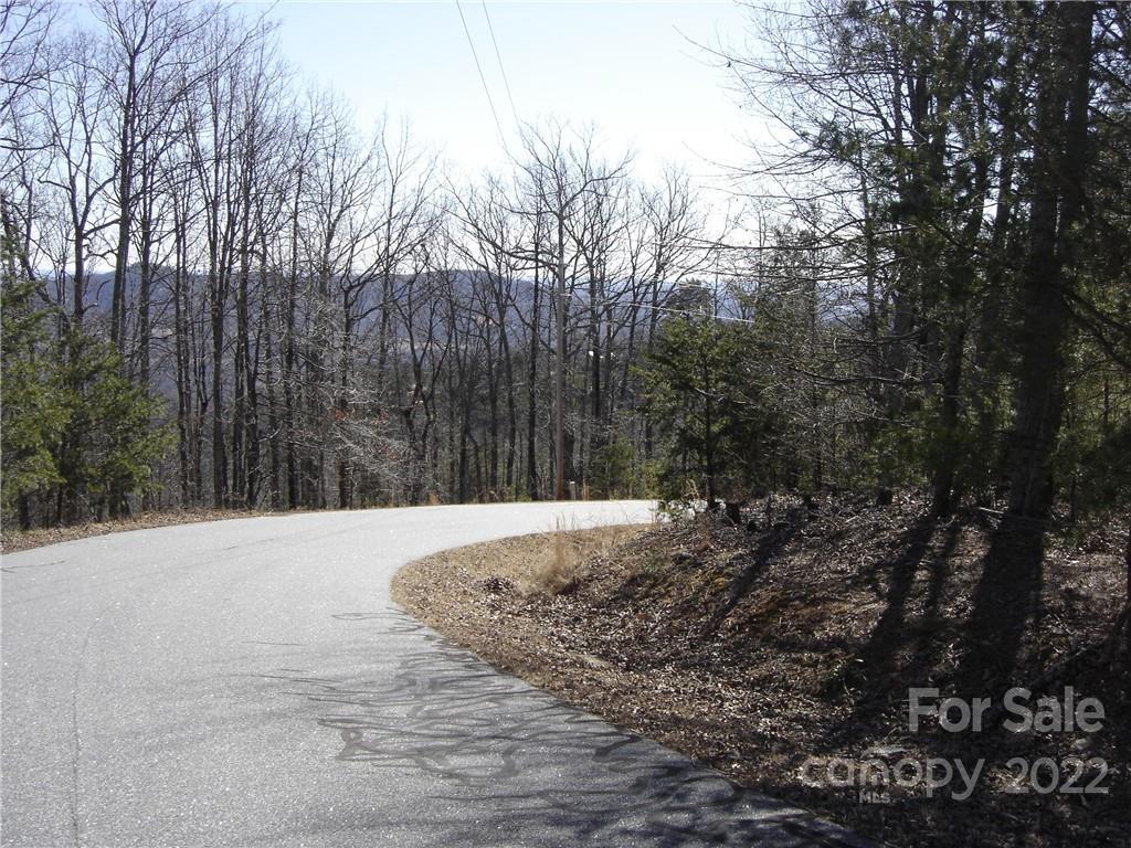 55 Arbra Mountain Way, Bostic, NC 28018, MLS # 3702274