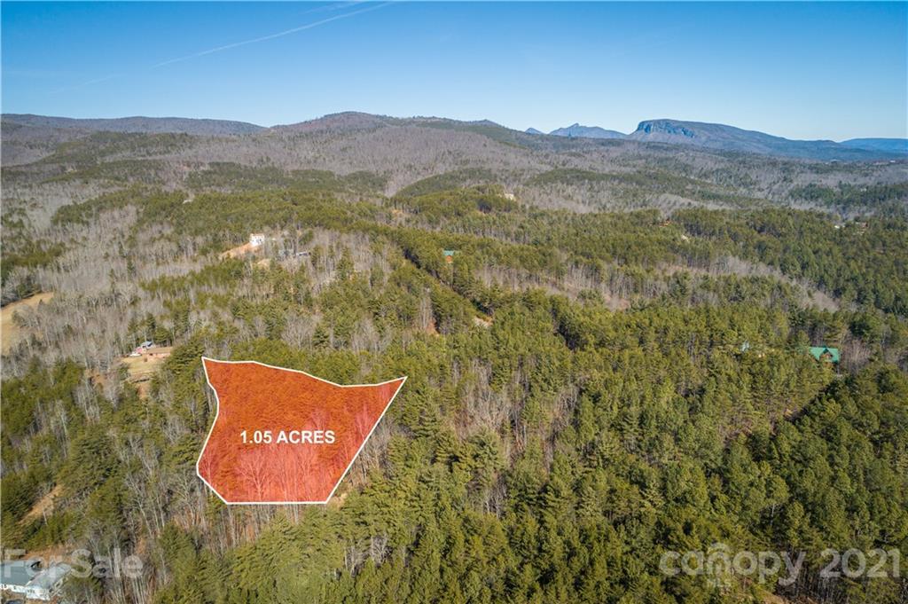 Rocky Path Unit 10, Nebo, NC 28761, MLS # 3703149