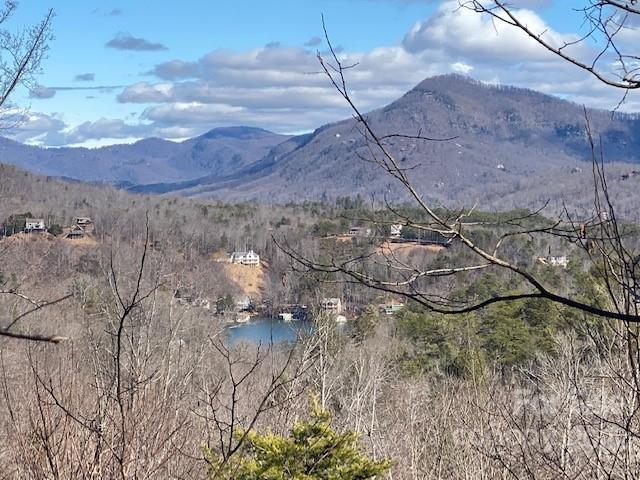 Clear Creek Trail, Lake Lure, NC 28746, MLS # 3711050