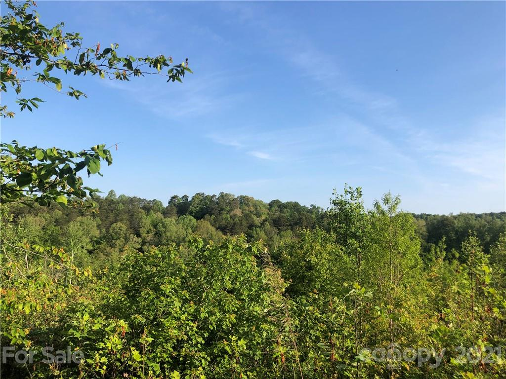 Overstone Drive Unit 280, Rutherfordton, NC 28139, MLS # 3742866