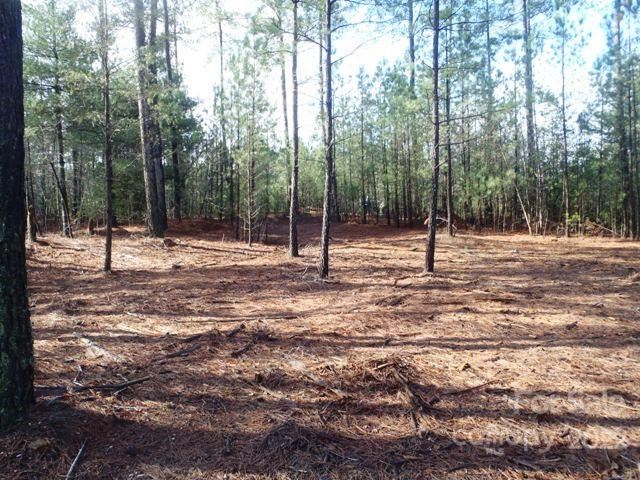 110 Rivercliff Drive Unit 32, Connelly Springs, NC 28612, MLS # 3750792