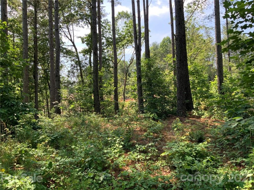 1243 Lake Vista Court Unit 9B, Connelly Springs, NC 28612, MLS # 3752290