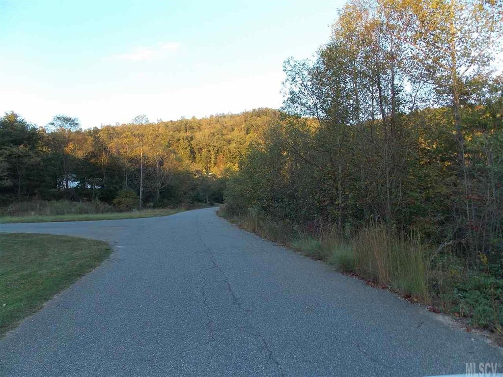 2510 Michael Court Unit 39, Hudson, NC 28638, MLS # 9584984