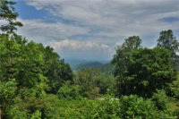 Freemont Drive # Lot 8, Leicester, NC 28748, MLS # 3524564 - Photo #1