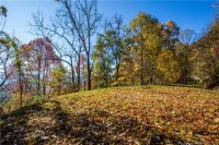 99999 Freemont Drive # 81, Leicester, NC 28748, MLS # 3569893 - Photo #1