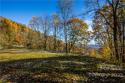 99999 Freemont Drive # 82, Leicester, NC 28748, MLS # 3569894 - Photo #8
