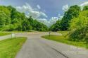 99999 Freemont Drive # 82, Leicester, NC 28748, MLS # 3569894 - Photo #22