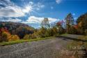 99999 Freemont Drive # 70, Leicester, NC 28748, MLS # 3569900 - Photo #4