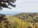 99999 Freemont Drive # 70, Leicester, NC 28748, MLS # 3569900 - Photo #6