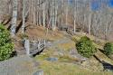 99999 Freemont Drive # 70, Leicester, NC 28748, MLS # 3569900 - Photo #22